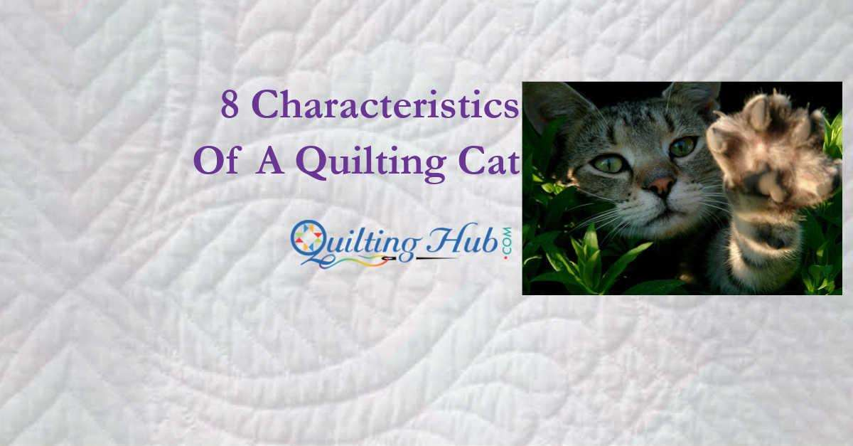 8 Characteristics Of A Quilting Cat